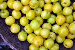 śliwki kolor żółty Fotografia Royalty Free
