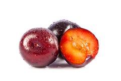 Śliwki odizolowywać na białych tło owoc karmowych zdjęcie royalty free