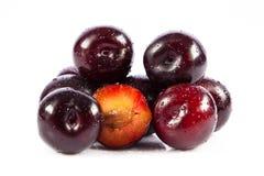 Śliwki odizolowywać na białych tło owoc karmowych zdjęcia stock