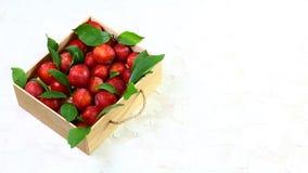Śliwki z liśćmi w drewnianym pudełku Na lekkim tle Uwalnia przestrzeń dla teksta Mieszkanie nieatutowy zdjęcie stock