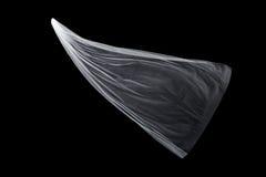 Ślubna biała Bridal przesłona odizolowywająca na czarnym tle zdjęcie royalty free