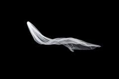 Ślubna biała Bridal przesłona odizolowywająca na czarnym tle przesłona trzepocze w wiatrze fotografia stock