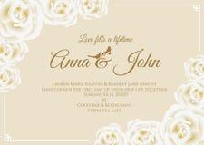 Ślubna karta - biel róży ramy i miękkiej części żółtego kremowego tła szablonu kwiecisty wektorowy projekt Obraz Stock