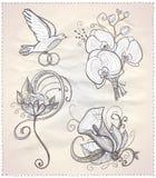 Ślubna kwiecista ręka rysujący graficzny ustawiający na papierze. Obraz Stock
