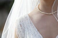 Ślubna przesłona obrazy royalty free