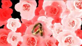 Ślubna wideo transitin vith zasłona ilustracji