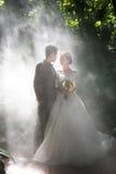 Ślubne fotografie w tropikalnym lesie deszczowym obraz royalty free