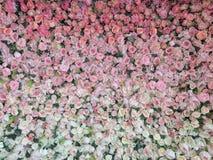 Ślubne róże Obrazy Royalty Free
