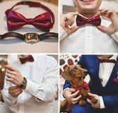 Ślubni akcesoria ustawiający Zdjęcia Stock