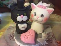 Ślubni koty zdjęcia royalty free