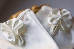Ślubni rękawicznicy Zdjęcia Royalty Free
