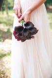Ślubny bukiet kalia bukiet kwiatów purpurowy piękne Fotografia Stock