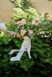 ślubny bukiet w rękach panna młoda, David Austin róża, zielony tło jeden ręka trzyma tylko bukiet fotografia royalty free