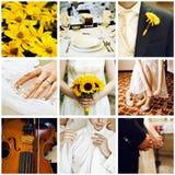 Ślubny kolaż Obraz Royalty Free