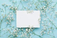 Ślubny mockup z białego papieru listą i kwiat łyszczec na błękita stole od above piękny kwiecisty wzór mieszkanie nieatutowy styl