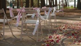 Ślubny nawa wystrój zdjęcie wideo