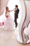 Ślubny pary całowanie Fotografia Stock