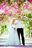 Ślubny sesja zdjęciowa. Obrazy Stock