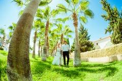 Ślubny sesja zdjęciowa. Zdjęcie Stock