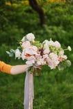 ślubny sztuka piękna bukiet w rękach panna młoda, David Austin róża, zielony tło jeden ręka trzyma tylko bukiet zdjęcia royalty free