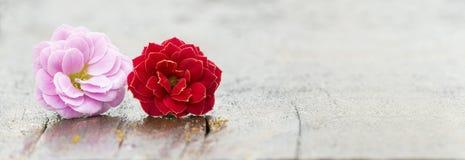 Ślubny zaproszenie karty tła pomysł Zdjęcia Royalty Free