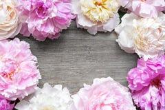 Ślubny zaproszenie lub ślubna karta pusta przestrzeń otaczająca z peonia kwiatami zdjęcie stock