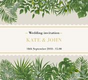 Ślubny zaproszenie, rsvp nowożytny karciany projekt Wektorowy naturalny, larwa zdjęcie royalty free
