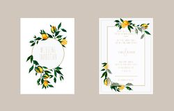 Ślubnych kart zaproszenie z cytryn gałąź royalty ilustracja