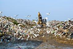 Śmieci, ciężarówki, praca, dalej, wysypisko Zdjęcia Stock