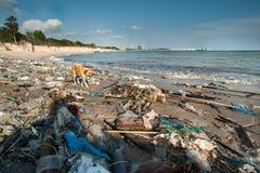 Śmieci i marnotrawi na plaży Obrazy Royalty Free