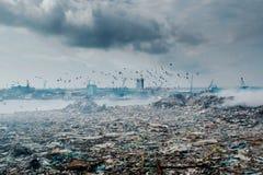 Śmieciarskiego usypu krajobraz pełno ściółka, klingeryt butelki i inny, niszczymy zdjęcie stock