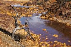 Śmierć i desolation w Tinto rzece obrazy royalty free
