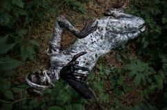 Śmierć w lesie fotografia stock