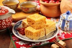 Śmierdzacy tofu Obrazy Royalty Free