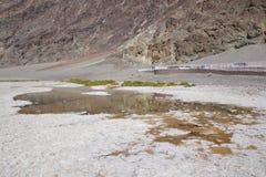 Śmiertelna Dolinna parka narodowego i śmierci doliny droga zdjęcie royalty free