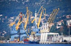 Śmiertelnie Trieste i żurawie w porcie, Włochy zdjęcie royalty free