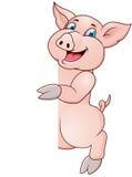 śmieszna świnia Obraz Royalty Free