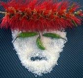 Śmieszna i unikalna maska obrazy royalty free