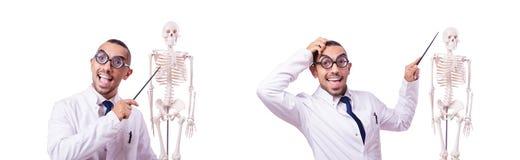 Śmieszna lekarka z koścem odizolowywającym na bielu fotografia stock