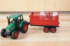 Śmieszna mała chomik przejażdżka na zabawkarskim ciągniku Biali chomiki w czerwonej przyczepie Obraz Stock