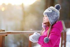 Śmieszna mała dziewczynka ma zabawę w zima parku Obrazy Stock