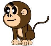 śmieszna małpa Fotografia Royalty Free