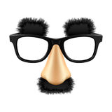 śmieszna maska Obraz Stock
