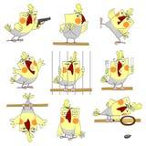 śmieszna papuga Zdjęcie Stock