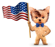 Śmieszna psia mienie usa flaga Pojęcie 4th Lipiec Zdjęcie Royalty Free