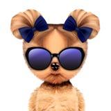 Śmieszna urocza doggy dziewczyna z elegancja okularami przeciwsłonecznymi royalty ilustracja