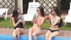 Śmieszne dziewczyny w swimsuits relaksują basenem pije alkoholicznych koktajle zdjęcie wideo