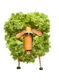 Śmieszni cakle robić warzywa Zdjęcie Royalty Free
