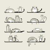 Śmieszni koty na półkach ilustracji