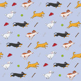 Śmieszni psy goni rzecz wzór ilustracja wektor